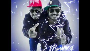 Havoc Brothers status